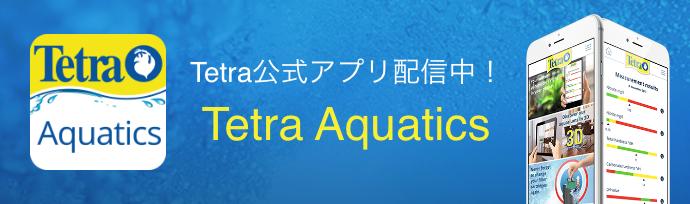 Tetra公式アプリ配信中! Tetra Aquatics